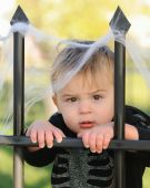 stock photo of baby spider  - Young caucasian boy resting against web covered cemetery fence - JPG