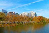 image of rosslyn  - Office buildings viewed from Theodore Roosevelt Bridge Washington DC - JPG