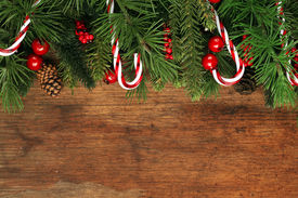 stock photo of candy cane border  - Christmas tree branches background - JPG