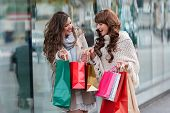 Two women shopping poster