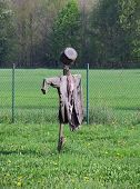 stock photo of scarecrow  - scarecrow made of old clothes and pot in the garden - JPG