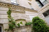 picture of mansion  - Plants in the courtyard of a French stoned mansion - JPG