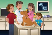 pic of working-dogs  - A vector illustration of a veterinarian examining a cute dog - JPG
