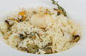 picture of cuttlefish  - Risotto with mussels and cuttlefish served fresh thyme - JPG