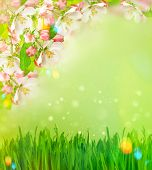 image of leak  - Blossoming apple tree and green grass over blurred nature background with light leaks - JPG