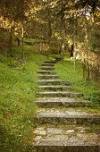 image of stepping stones  - Old stone steps path leading to the sunshine with atmospheric warm lighting - JPG