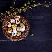 Easter Still Life. Easter Eggs. poster