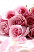 picture of rose flower  - Bouquet rose - JPG