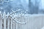 Part of an old wooden fence covered with fluffy snow. Winter. Concept of winter. Fabulous winter. Ma poster