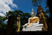 Wat Chang With Buddha Statues Historical Park In Kamphaeng Phet, poster