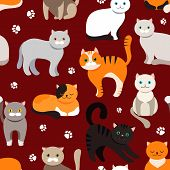 Cat Background, Seamless Pattern. Vector Flat Illustration. Kitty, Pets. Exotic And Ordinary Cats. C poster