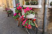 Bicycle With Flowers Parked On The Street In Rome, Italy. Cozy Old Street Of Rome. Architecture And  poster