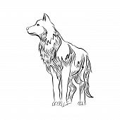 Wolf Icon Isolated On White Background. Wolf Icon Simple Sign. Wolf Icon Trendy And Modern Symbol Fo poster
