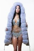 Luxurious Fur. Girl Posing Fur Coat. Woman Attractive Nude Body Shimmering Lingerie Wear Fur Coat. F poster