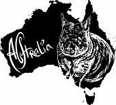 picture of wombat  - Wombat on map of Australia - JPG