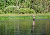 image of chub  - Fisherman catches of chub fly fishing in the Chusovaya river in the afternoon - JPG