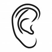 picture of sensory perception  - The human ear isolated on white backgeound  - JPG