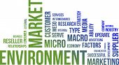 Word Cloud - Market Environment