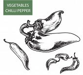 stock photo of cayenne pepper  - Set of hand drawn illustrations of peppers - JPG