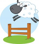 stock photo of counting sheep  - Funny Black Head Sheep Jumping Over The Fence - JPG