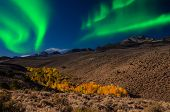picture of tromso  - Amazing Northern Lights aurora borealis at night - JPG