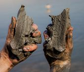 image of israel people  - Dead sea mud on Dead sea in Israel - JPG
