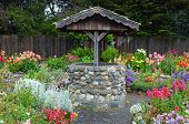 image of wishing-well  - Old brick wishing well in colorful dahlia garden - JPG