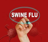 image of swine flu  - writing word SWINE FLU with marker on red background made in 2d software - JPG