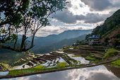 stock photo of ifugao  - rice-terraces near Poitan-village with reflections of the clouds in the ricefields