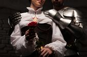 stock photo of knights  - Closeup portrait of red rose - JPG