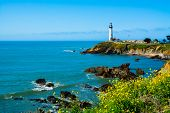 picture of lighthouse  - Pigeon Point Lighthouse in California - JPG