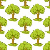 pic of leafy  - Cartoon forest seamless pattern showing trees with round green leafy crowns on white background - JPG