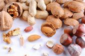 stock photo of shells  - Group tasty nuts in shell and shelled on a white wooden table top view - JPG