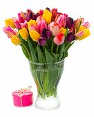 foto of bosoms  - bunch of multicolored fresh  tulip flowers in vase  isolated on white background - JPG