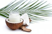 Ripe Coconut And Organic Coconut Oil In Glass Jar With Coconut Leaf Isolated On White poster