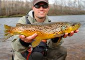 stock photo of fish pond  - Fly fisherman holding a huge Brown Trout fish prior to releasing into the river  - JPG