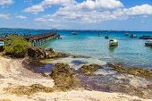 Seascape, Ocean Coast: View From Changuu Island ( Prison Island ) To  Azure Water, Tourist Boats On  poster