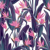 Bird Of Paradise Tropical Flower Vector Seamless Pattern. Jungle Plant Paradise Tropical Summer Fabr poster