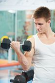 stock photo of triceps brachii  - athlete man at biceps brachii muscles exercises with training dumbbells in fitness gym - JPG