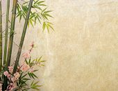 stock photo of orientation  - bamboo and plum blossom on old antique paper texture - JPG