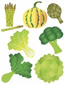 stock photo of romaine lettuce  - Vegetables Pumpkin Squash Melon Asparagus Artichoke Broccoli Lettuce Leafy Green Kale Spinach Cabbage Illustration - JPG
