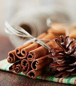 Close up of cinnamon sticks and cone on tea towel