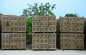 stock photo of lobster trap  - stacked lobster and crab traps for commercial lobster industry - JPG