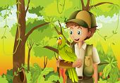 image of hollow log  - Illustration of a young boyscout with a parrot - JPG