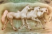 IRAQ - CIRCA 1978: Arabian Horses on 25 Dinars 1978 Banknote from Iraq.