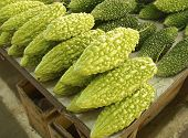 stock photo of bitter gourd  - A row of bitter gourds at the vegetable market - JPG