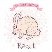 stock photo of rabbit year  - Chinese Zodiac  - JPG