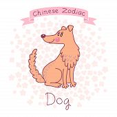 pic of sheep-dog  - Chinese Zodiac  - JPG