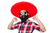 pic of hirsutes  - Funny mexican with sombrero hat - JPG