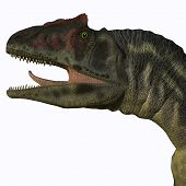 foto of carnivores  - Allosaurus was a carnivorous theropod dinosaur in the Late Jurassic Period of North America - JPG
